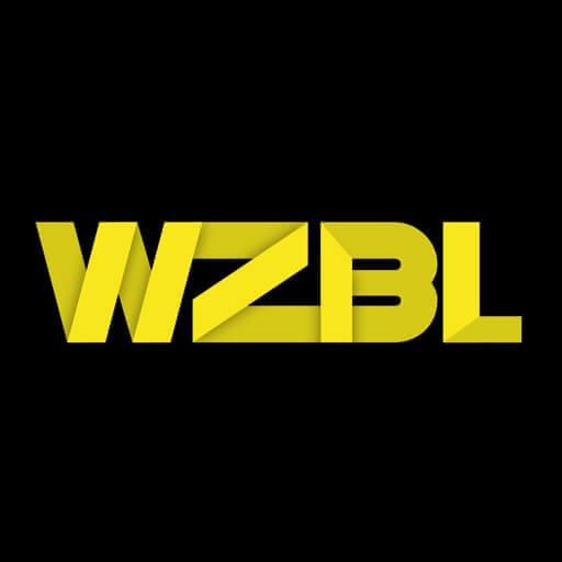 Wizibel